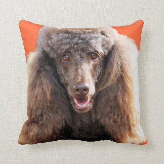 Poodle Dog Portrait Cushion