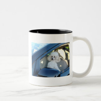 Poodle Driver Two-Tone Coffee Mug