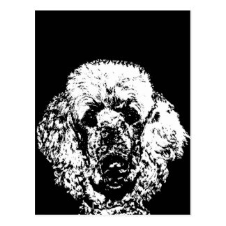 Poodle Gifts - Postcard