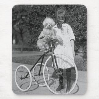 Poodle Perch, 1913 Mouse Pad
