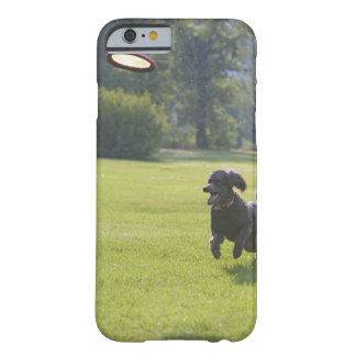 Poodle playing frisbee barely there iPhone 6 case