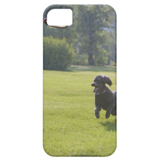 Poodle playing frisbee iPhone 5 cover