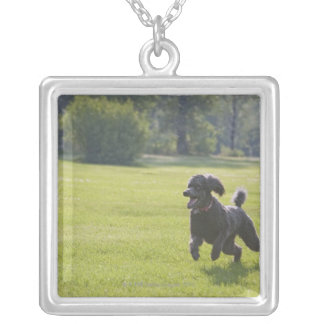 Poodle playing frisbee silver plated necklace