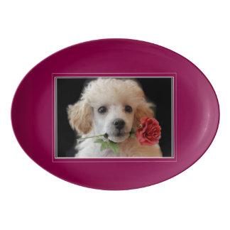 Poodle puppy dog serving platter porcelain serving platter