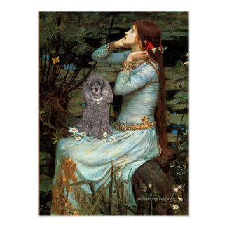 Poodle (Silver 8) - Ophelia Seated Poster