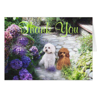 Poodle Thank You Card Hydrangeas
