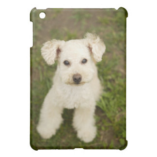 Poodle (white) iPad mini case