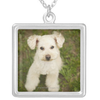 Poodle (white) silver plated necklace