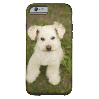 Poodle (white) tough iPhone 6 case