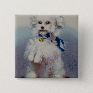 Poodle with blue ribbon 15 cm square badge