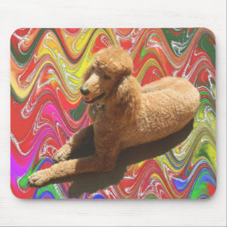 POODLE WITH CHRISTMAS CANDY COLORS. MOUSE MAT