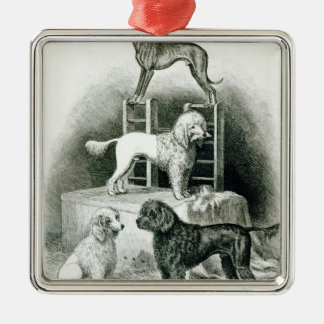 Poodles and Whippet - Group of Mr. Walton's Silver-Colored Square Decoration