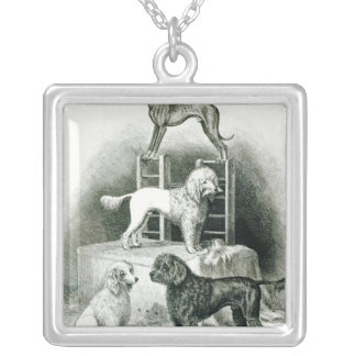 Poodles and Whippet - Group of Mr. Walton's Silver Plated Necklace