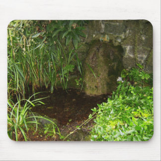 Pool Capturing Waters From St Brigids Holy Well Mouse Pads
