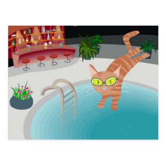 Pool cat postcard