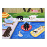 Pool Party Labradors Summer Party Invitations