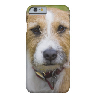 pooley bridge cumbria england 2 barely there iPhone 6 case