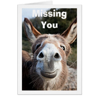 POOR DONKEY MISSES YOU/NOT VERY HAPPY ABOUT THAT GREETING CARD