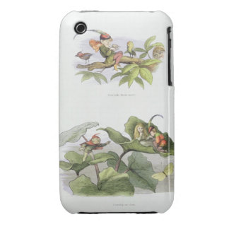 Poor little Birdie teased, and Courtship cut short iPhone 3 Case