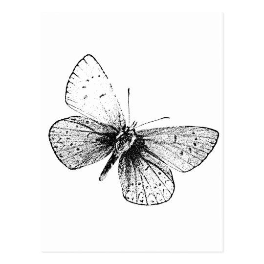 Pop Art Butterfly Postcard