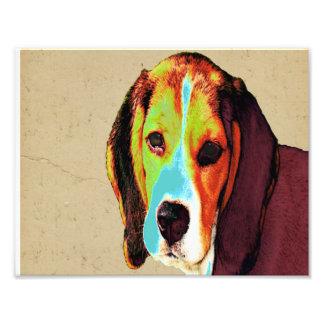 Pop Art Like Beagle Art Photo