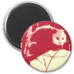 Pop Art Opossum Magnet