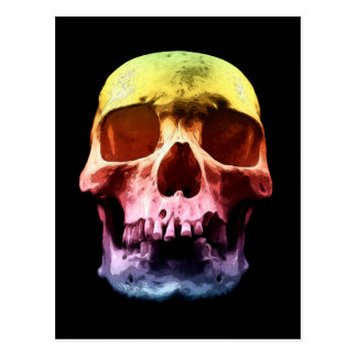 Pop Art Skull Face Postcard