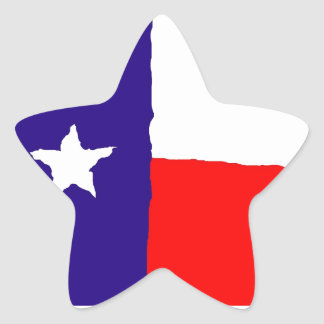Pop Art Texas State Flag Star Sticker