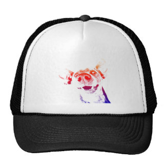 Pop art Weimaraner Cap