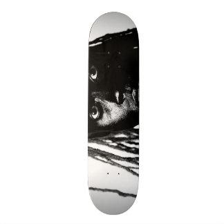 pop blacq skate board deck