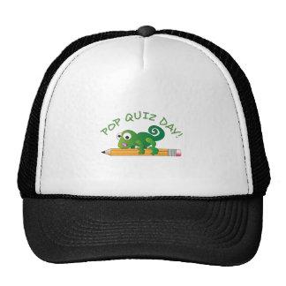 POP QUIZ DAY HAT