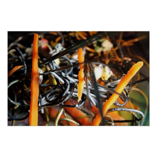 Popcorn & Carrots #07 poster print