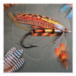 Popham Salmon Fly Posters