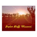 Poplar Bluff Missouri Postcard