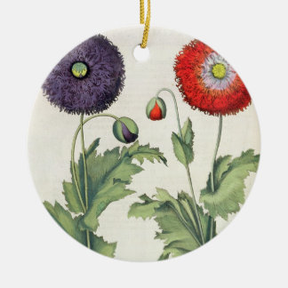 Poppies: 1.Papaver flore multiplici incarnato; 2.P Christmas Ornament