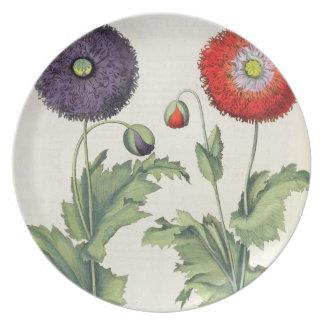 Poppies: 1.Papaver flore multiplici incarnato; 2.P Plate