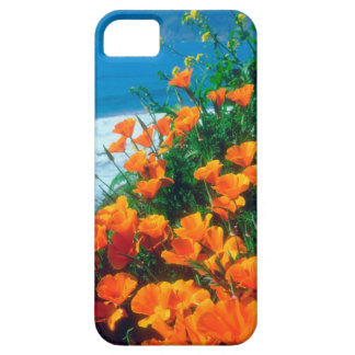 Poppies along the Pacific Coast near Big Sur Barely There iPhone 5 Case