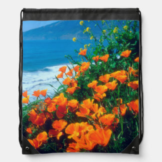 Poppies along the Pacific Coast near Big Sur Drawstring Bag