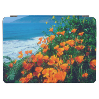 Poppies along the Pacific Coast near Big Sur iPad Air Cover