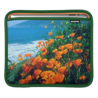 Poppies along the Pacific Coast near Big Sur iPad Sleeve