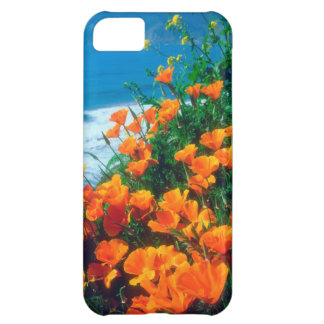 Poppies along the Pacific Coast near Big Sur iPhone 5C Case