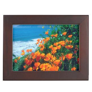 Poppies along the Pacific Coast near Big Sur Keepsake Box