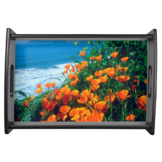 Poppies along the Pacific Coast near Big Sur Serving Tray