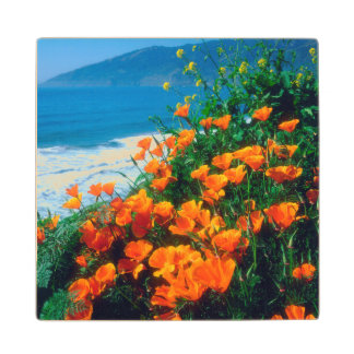Poppies along the Pacific Coast near Big Sur Wood Coaster