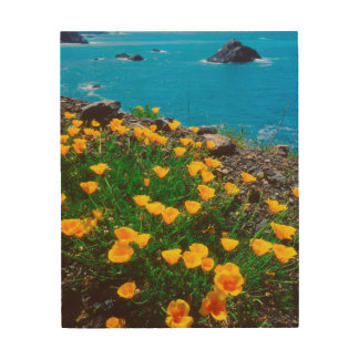 Poppies along the Pacific Coast Wood Wall Art