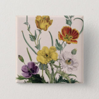 Poppies and Anemones 15 Cm Square Badge