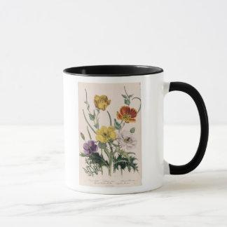 Poppies and Anemones Mug
