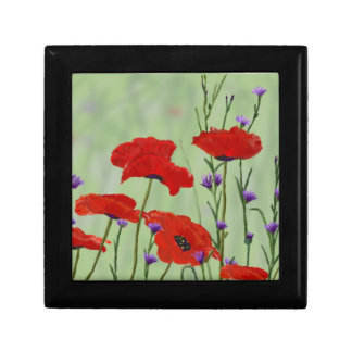 Poppies and Bachelor Buttons Small Square Gift Box