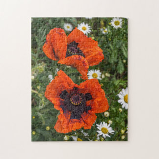 Poppies and daisies photo puzzle