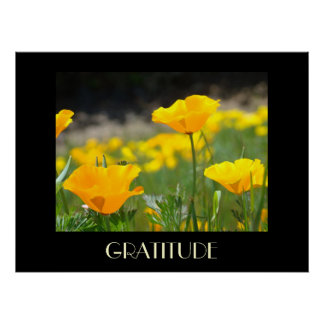 Poppies Art Prints Gifts GRATITUDE Poppy Flowers Posters
